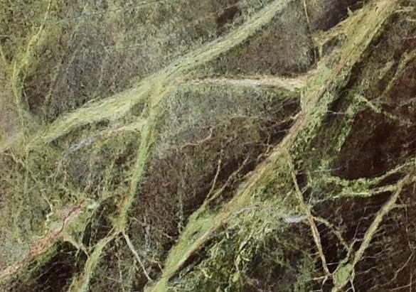 rain-forest-verde-home